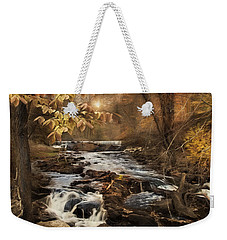 Weekender Tote Bag featuring the photograph Fall In The Woodland by Robin-lee Vieira