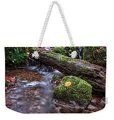 Fall In The Woods Weekender Tote Bag