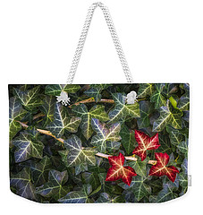 Weekender Tote Bag featuring the photograph Fall Ivy Leaves by Adam Romanowicz
