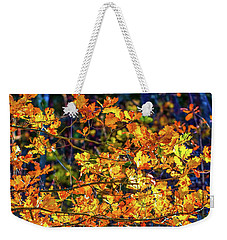 Fall Light #e2 Weekender Tote Bag by Leif Sohlman