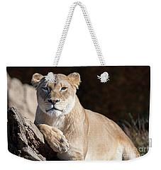 Fall Lioness Weekender Tote Bag