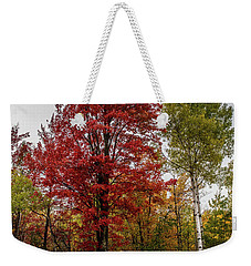 Weekender Tote Bag featuring the photograph Fall Maple by Paul Freidlund