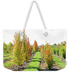 Fall On The Tree Farm Weekender Tote Bag