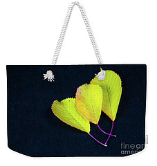 Weekender Tote Bag featuring the photograph Fall Season Colors by Kennerth and Birgitta Kullman