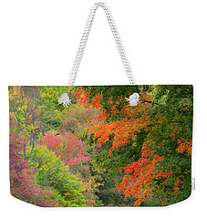 Weekender Tote Bag featuring the photograph Fall Seating by Alan L Graham