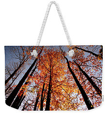 Fall Trees Sky Weekender Tote Bag