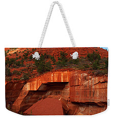 Weekender Tote Bag featuring the photograph Fallen by James Peterson