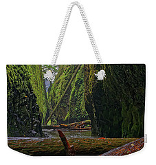Weekender Tote Bag featuring the photograph Fallen by Jonathan Davison