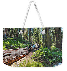 Weekender Tote Bag featuring the photograph Fallen Tree- by JD Mims