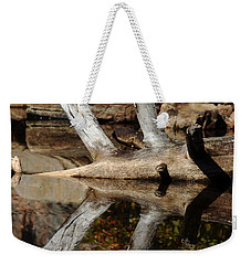 Weekender Tote Bag featuring the photograph Fallen Tree Mirror Image by Debbie Oppermann