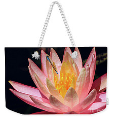 Familiar Bluet Damselfly And Lotus 2 Weekender Tote Bag