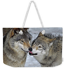 Weekender Tote Bag featuring the photograph Familiar by Tony Beck