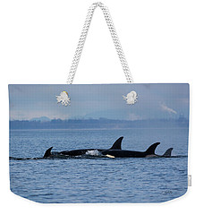 Weekender Tote Bag featuring the photograph Family Life's Greatest Blessing - Wildlife Art by Jordan Blackstone