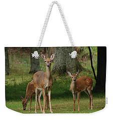 Family Walk Weekender Tote Bag