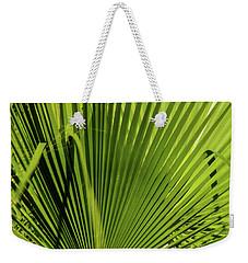 Fan Palm View 2 Weekender Tote Bag by James Gay
