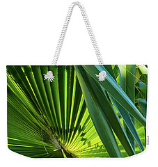 Fan Palm View 3 Weekender Tote Bag by James Gay