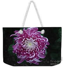 Fancy Chrysanthemum In Pink Weekender Tote Bag