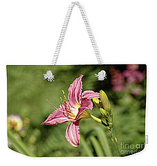 Farmington Lilly 4 Weekender Tote Bag