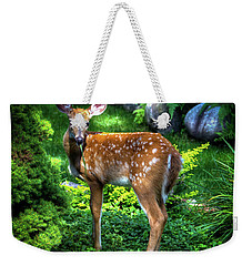 Weekender Tote Bag featuring the photograph Fawn In The Garden by David Patterson