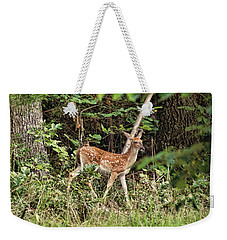 Fawn In The Woods Weekender Tote Bag by Rick Friedle