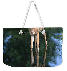 Fawn Reflection Weekender Tote Bag