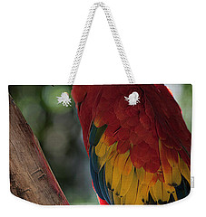 Feathered Rainbow Weekender Tote Bag