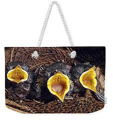 Feed Me Weekender Tote Bag by Judi Saunders