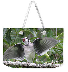 Weekender Tote Bag featuring the photograph Feed Me by Wendy Coulson