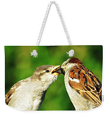 Weekender Tote Bag featuring the photograph Feeding Baby Sparrow 3 by Judy Via-Wolff