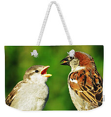 Weekender Tote Bag featuring the photograph Feeding Baby Sparrows 2 by Judy Via-Wolff