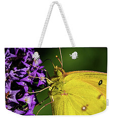 Weekender Tote Bag featuring the photograph Feeding Butterfly by Jay Stockhaus