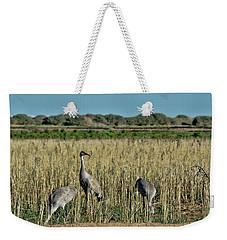 Feeding Greater Sandhill Cranes Weekender Tote Bag