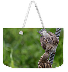 Weekender Tote Bag featuring the photograph Feeding Time by Brian Roscorla