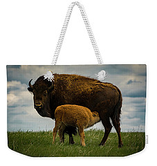Weekender Tote Bag featuring the photograph Feeding Time II by Gary Lengyel