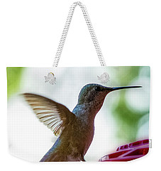 Weekender Tote Bag featuring the photograph Female Anna's Hummingbird V24 by Mark Myhaver