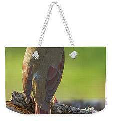 Weekender Tote Bag featuring the photograph Female Cardinal by David Waldrop