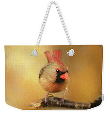 Weekender Tote Bag featuring the photograph Female Cardinal Excited For Spring by Darren Fisher