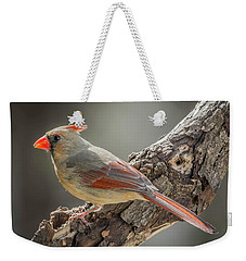 Female Cardinal Img 1 Weekender Tote Bag by Bruce Pritchett