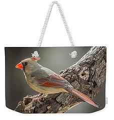 Female Cardinal Img 1 Weekender Tote Bag