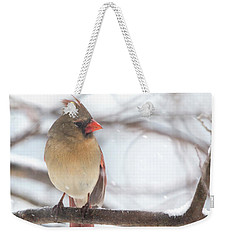 Female Cardinal In Snow Weekender Tote Bag