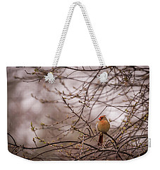 Weekender Tote Bag featuring the photograph Female Cardinal In Spring 2017 by Terry DeLuco