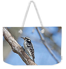 Weekender Tote Bag featuring the photograph Female Downey Woodpecker 1104  by Michael Peychich