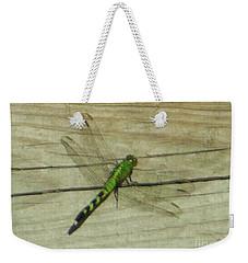 Female Eastern Pondhawk Dragonfly Weekender Tote Bag