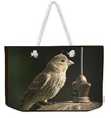 Female House Finch On Feeder Weekender Tote Bag