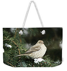 Female House Finch On Snow Weekender Tote Bag