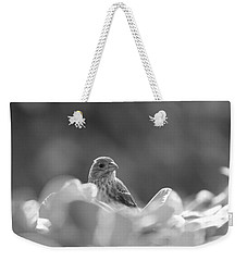 Female House Finch Perched In Black And White Weekender Tote Bag