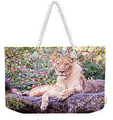 Female Lion Resting Weekender Tote Bag by Stephanie Hayes
