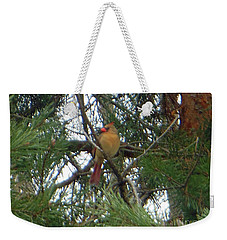 Female Northern Cardinal Weekender Tote Bag