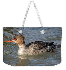 Weekender Tote Bag featuring the photograph Female Red-breasted Merganser by Ricky L Jones