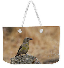 Female Red Crossbill Weekender Tote Bag by Doug Lloyd